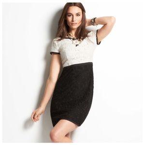 Ann Taylor Lace Colorblock Dress 0P